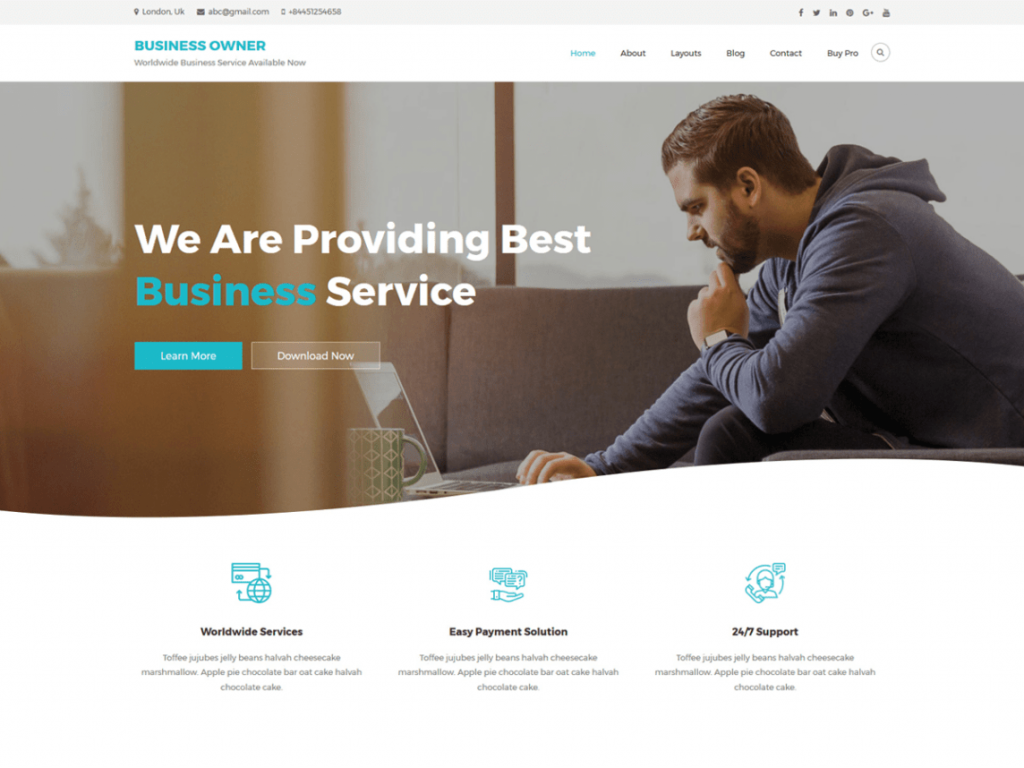 Business Owner Theme Preview